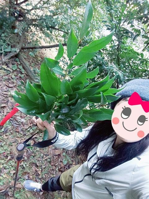 f:id:yuko76a:20191230073912j:image