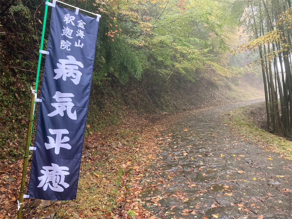 f:id:yuko76a:20201109235121j:image