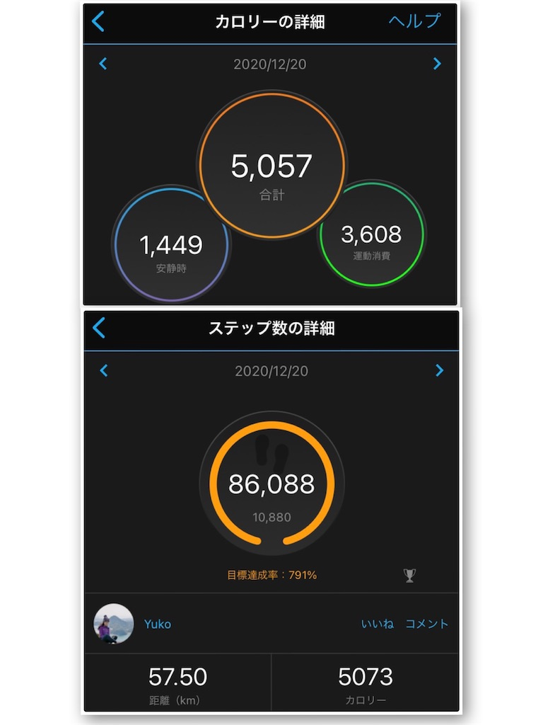 f:id:yuko76a:20201228075924j:image