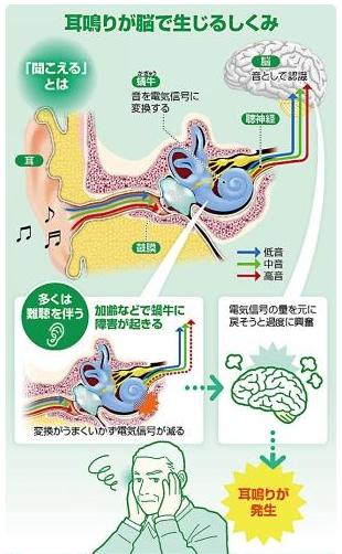 f:id:yukukawa-no-nagare:20200412130729p:plain