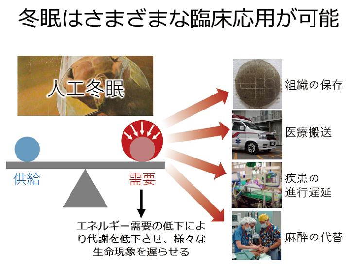 f:id:yukukawa-no-nagare:20200616192329p:plain