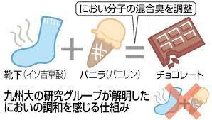 f:id:yukukawa-no-nagare:20200709065806j:plain
