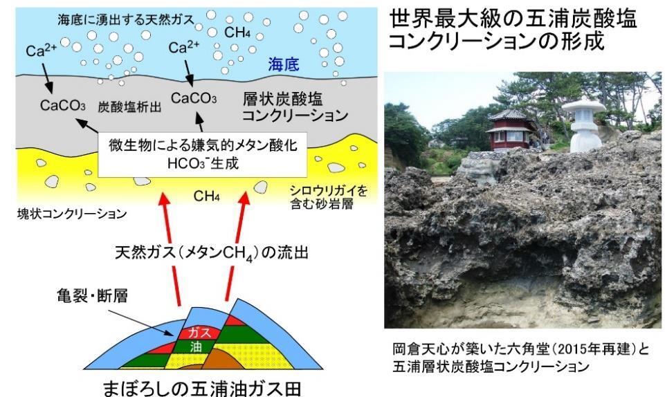 f:id:yukukawa-no-nagare:20200709095003j:plain