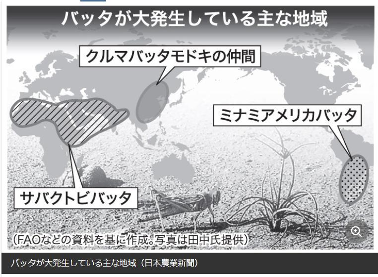 f:id:yukukawa-no-nagare:20200729061250p:plain