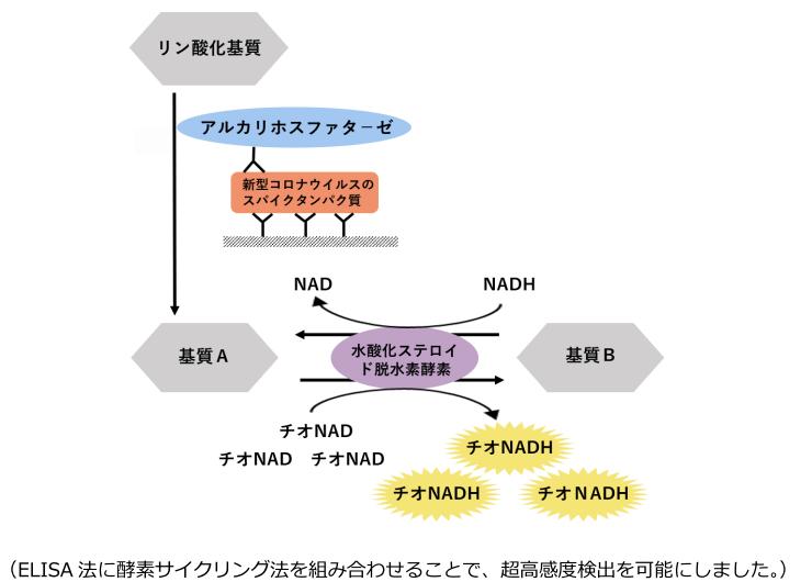 f:id:yukukawa-no-nagare:20200821071809p:plain