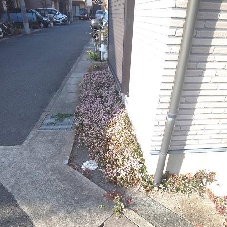f:id:yukukawa-no-nagare:20201129111521j:plain