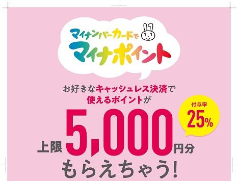 f:id:yukukawa-no-nagare:20201223081820j:plain