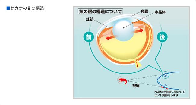 f:id:yukukawa-no-nagare:20210304192033j:plain