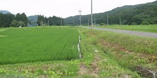 f:id:yukukawa-no-nagare:20210518090743j:plain