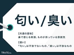 f:id:yukukawa-no-nagare:20210620084330p:plain