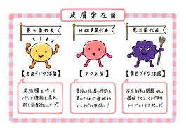 f:id:yukukawa-no-nagare:20210928120556p:plain