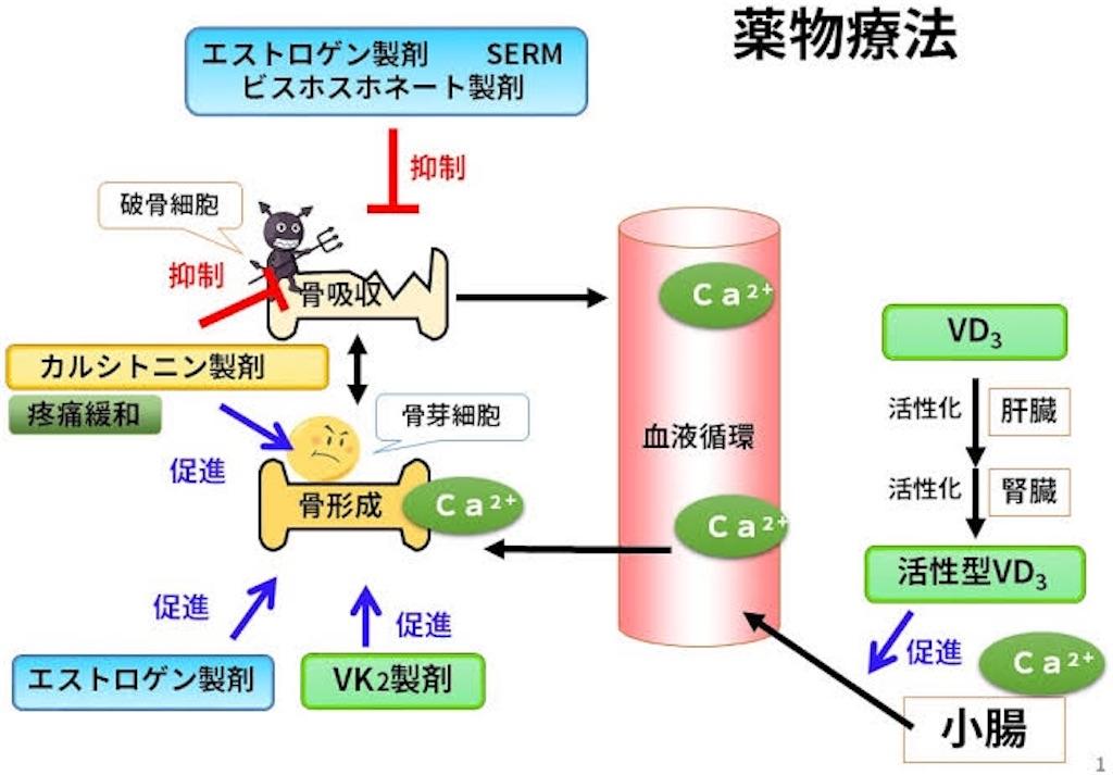 f:id:yukuma0721:20190524111302j:image