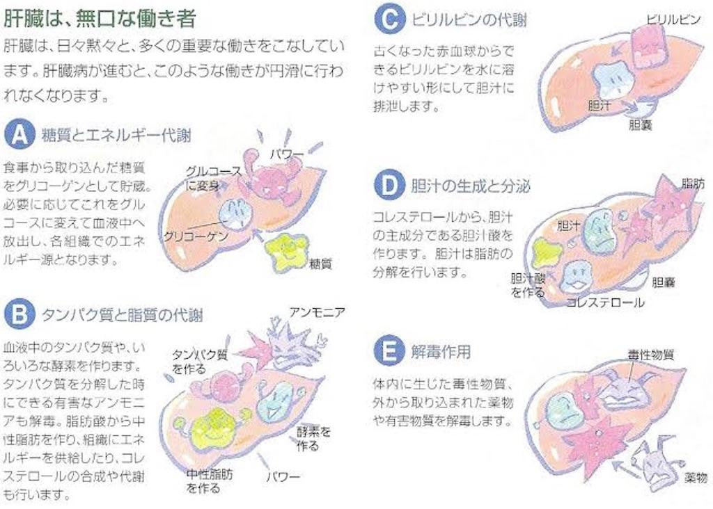 f:id:yukuma0721:20190605141259j:image
