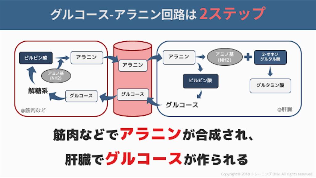 f:id:yukuma0721:20190607134701p:image