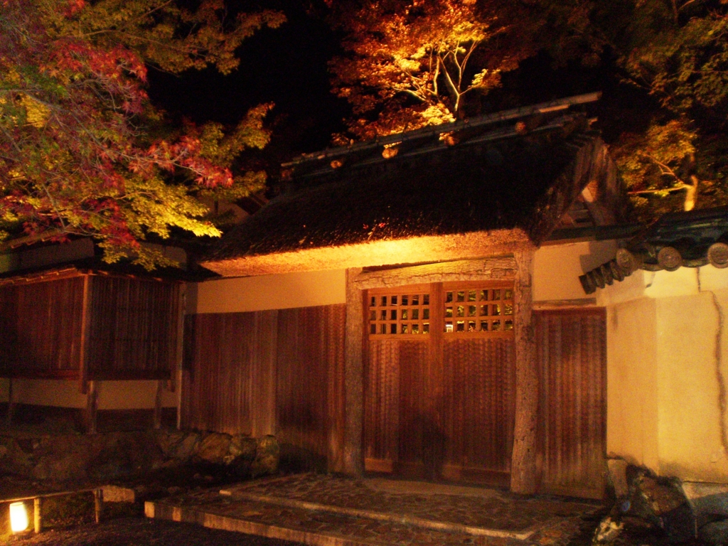 f:id:yuluttoKyoto:20161112233416j:plain