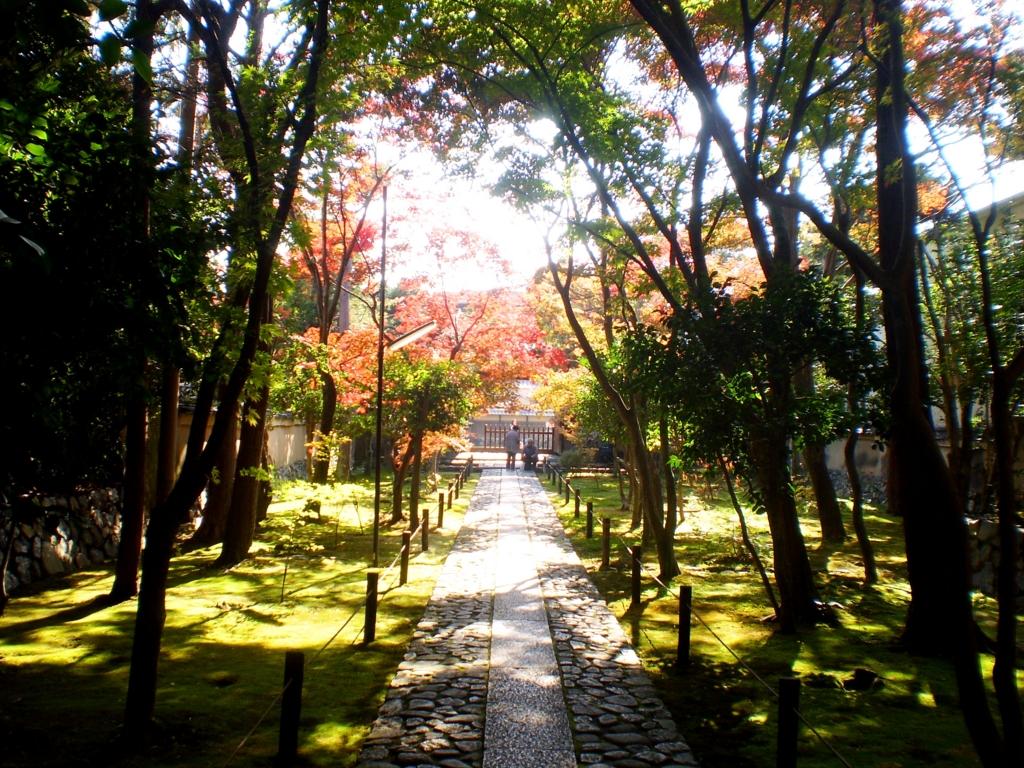 f:id:yuluttoKyoto:20161122153244j:plain