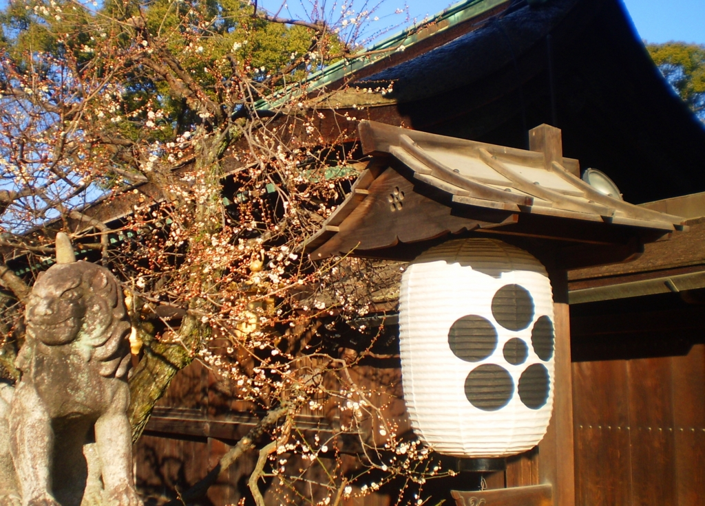 f:id:yuluttoKyoto:20170130233111j:plain