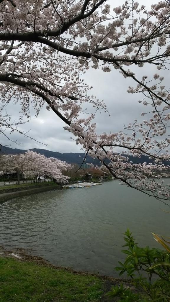 f:id:yuluttoKyoto:20170409174257j:plain