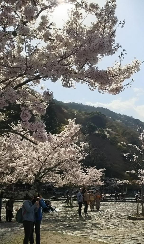 f:id:yuluttoKyoto:20170413234044j:plain