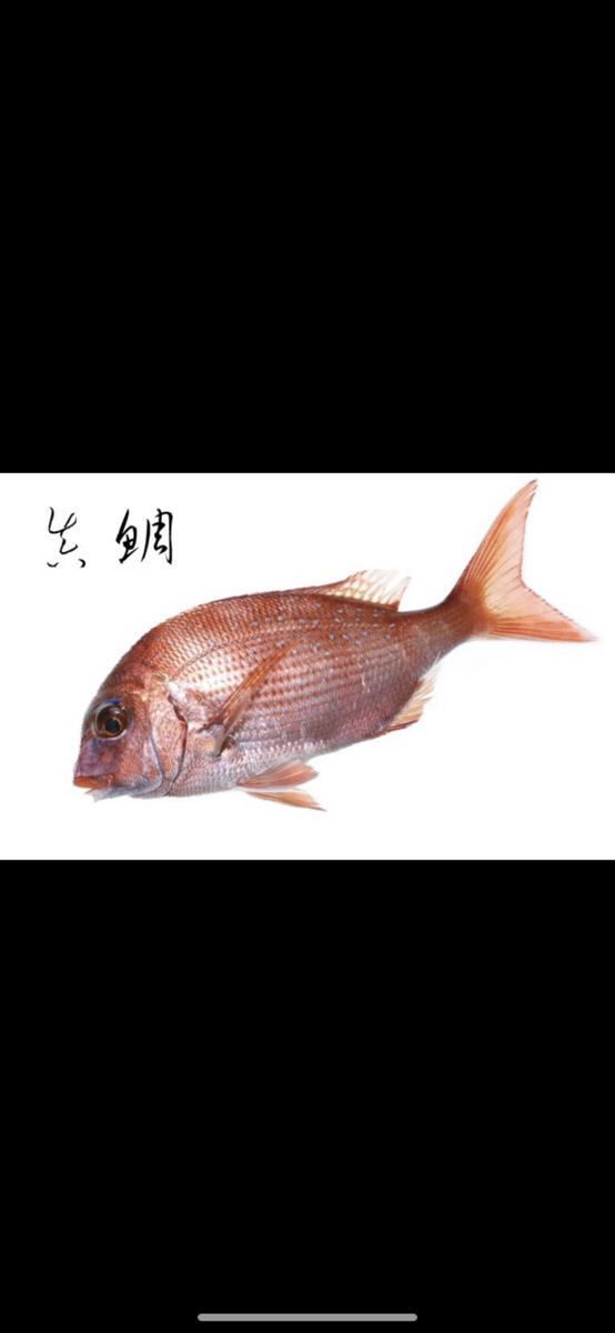 f:id:yum_fishing:20200729221035p:plain