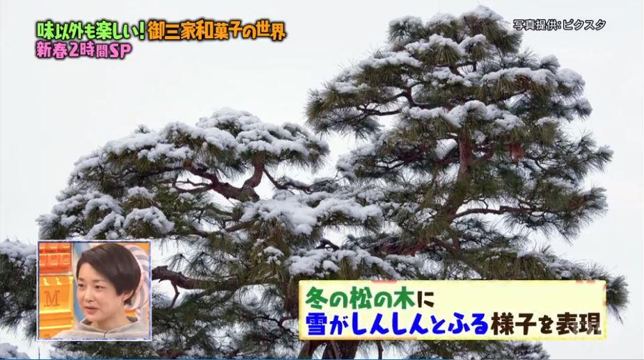 f:id:yumajunsa:20180112200518j:plain