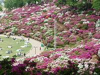200px-Nishiyama_Park.jpg