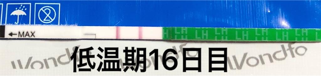 f:id:yumameco:20180927134938j:image