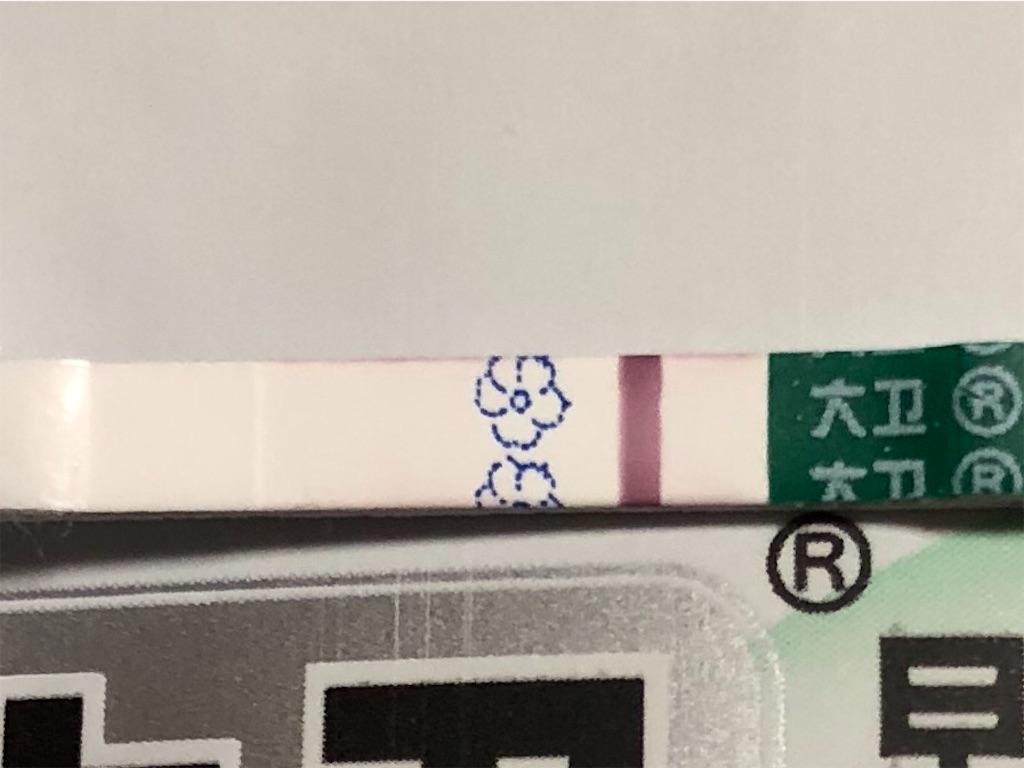 f:id:yumameco:20181203065821j:image