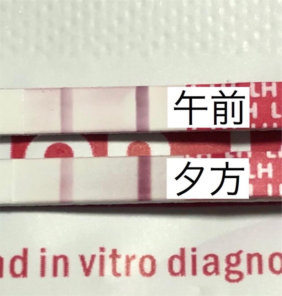 f:id:yumameco:20190806172130j:image
