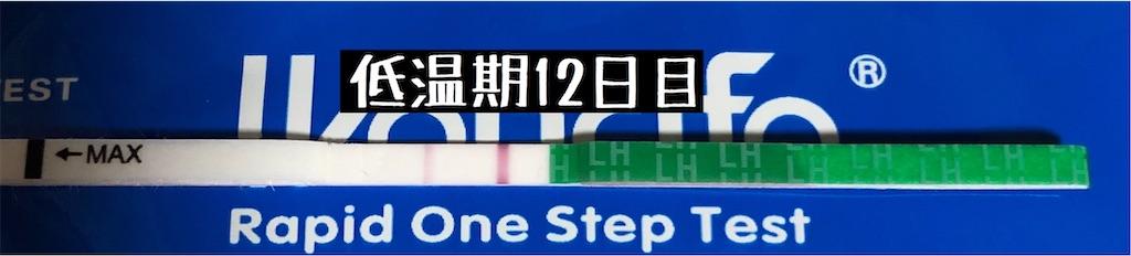f:id:yumameco:20200124113709j:image