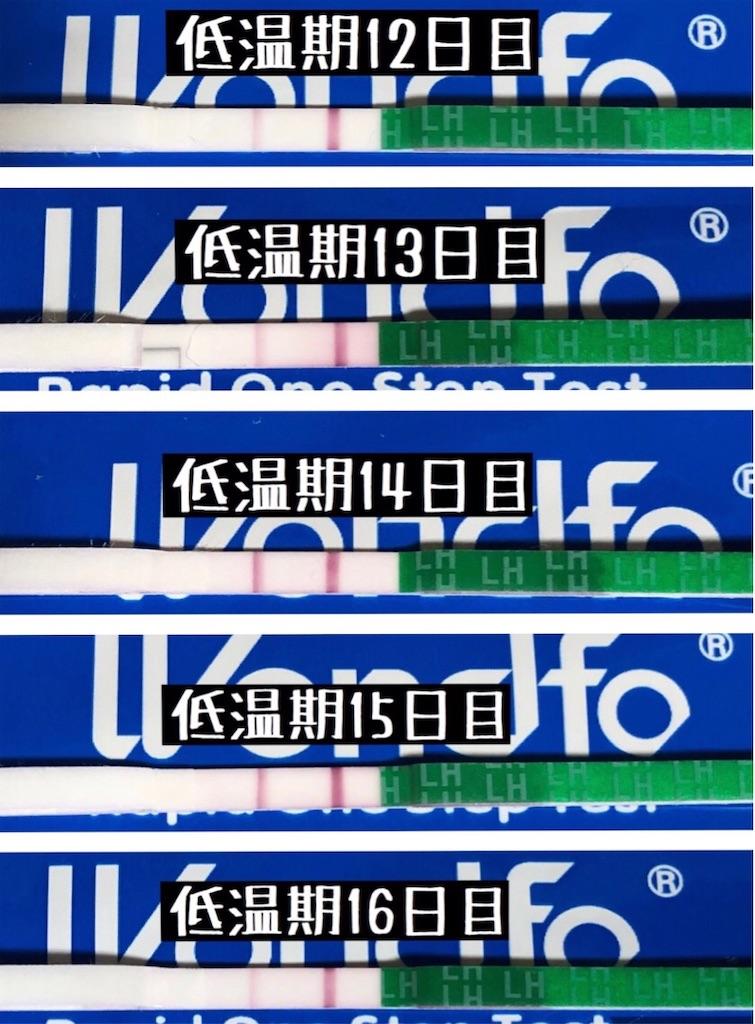 f:id:yumameco:20200128104439j:image