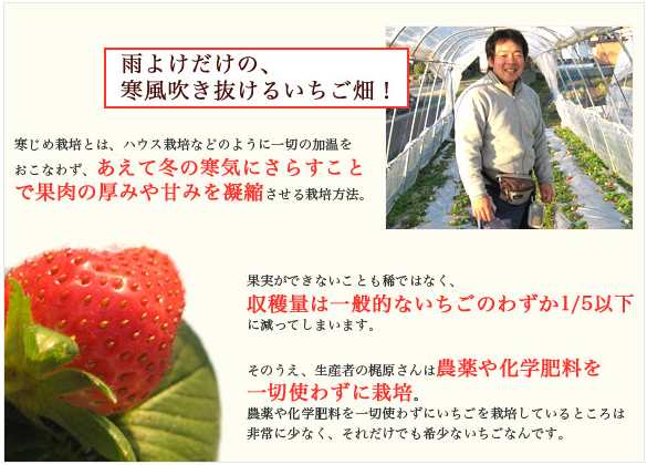 f:id:yumao:20170204162235p:plain
