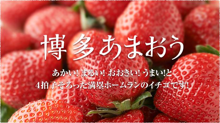 f:id:yumao:20170219163158j:plain