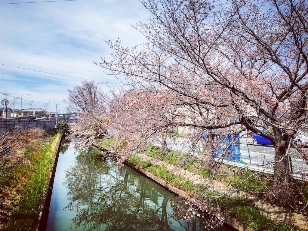 f:id:yumayoshinaka:20170504231507j:image