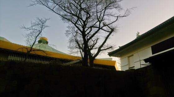 エレファントカシマシ新春武道館2015@1月3日(土)の画像