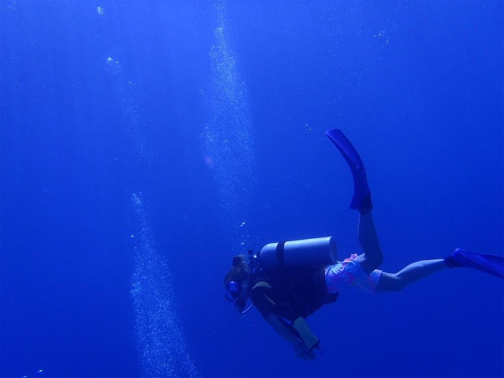 f:id:yume-diver:20210211002803j:image