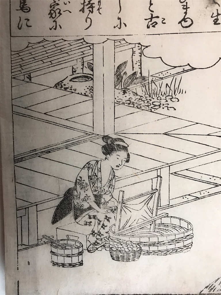 f:id:yume-kashiwagi:20170331195437j:image