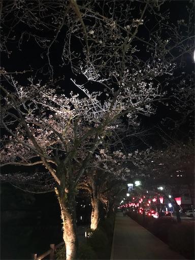 f:id:yume-kashiwagi:20180326085140j:image