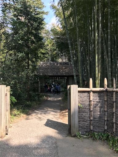 f:id:yume-kashiwagi:20180329152403j:image