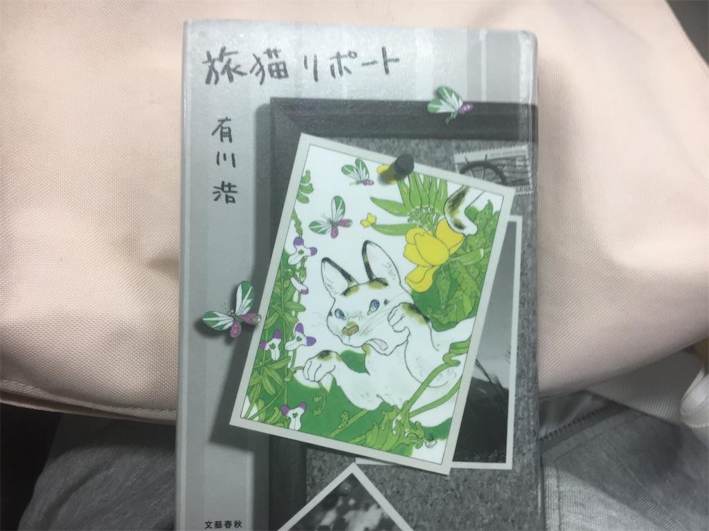 f:id:yume-sakupan:20190610215438j:image