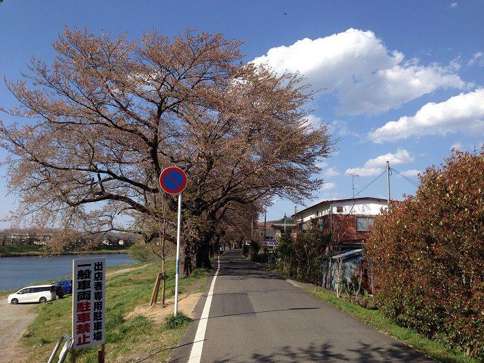 f:id:yume-yazawa-ism:20180414231801j:plain