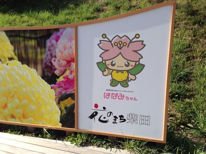 f:id:yume-yazawa-ism:20180414233355j:plain