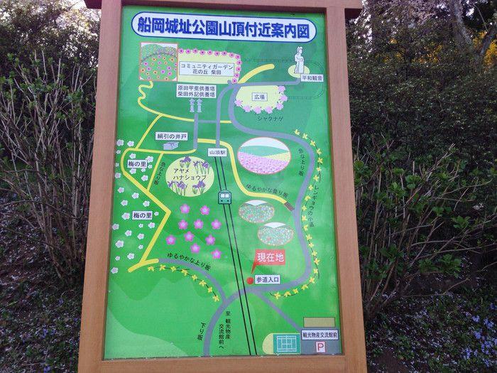 f:id:yume-yazawa-ism:20180415000105j:plain