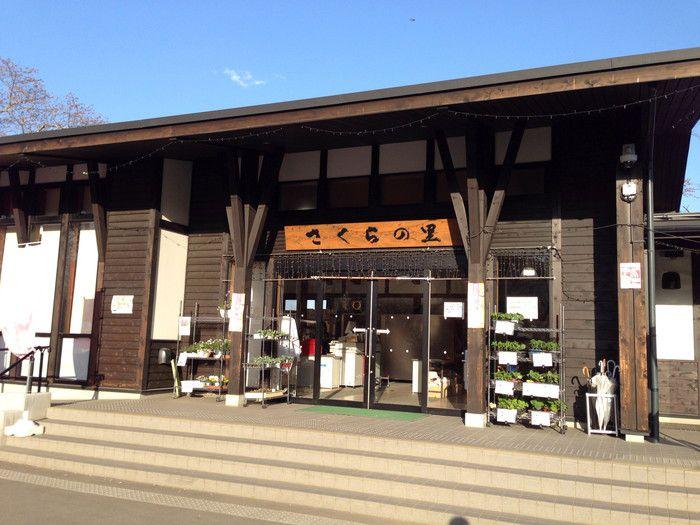 f:id:yume-yazawa-ism:20180415001606j:plain