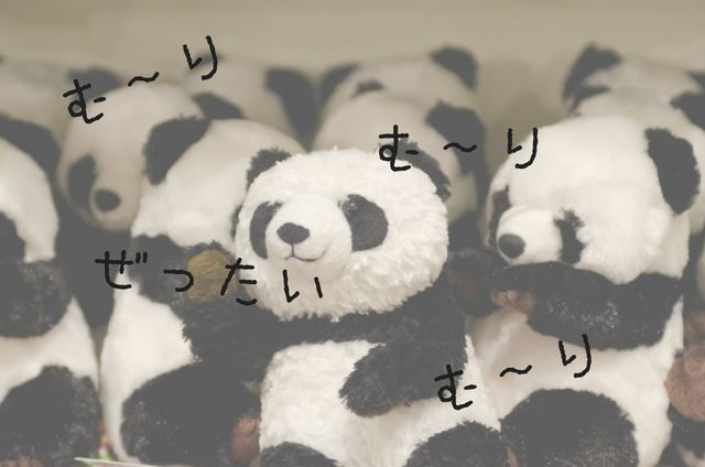 f:id:yume-yazawa-ism:20180709214014j:plain