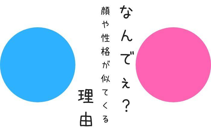 f:id:yume-yazawa-ism:20181209222919j:plain