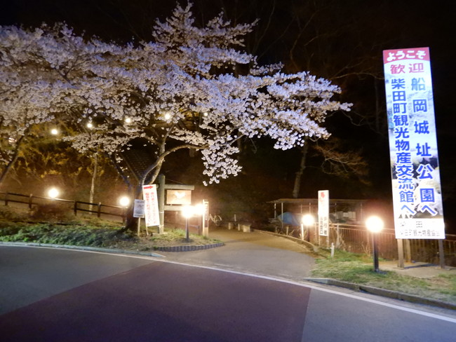 船岡城址公園までここの道を歩く