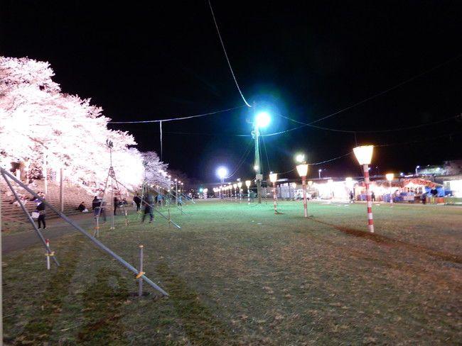 千本桜がライトアップされているしばた桜まつり会場に到着