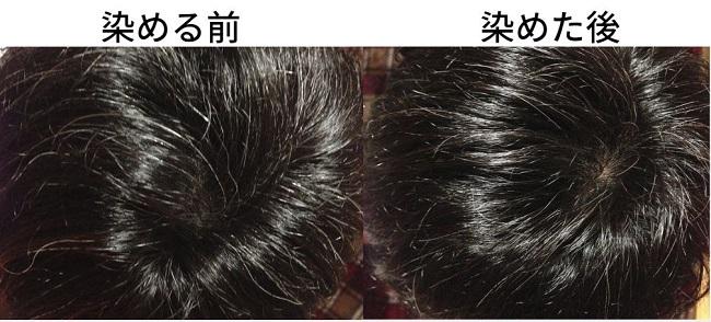 【美容師レビュー】ルプルプは染まるのか、1回目の染まりぐらいの検証をしていきます