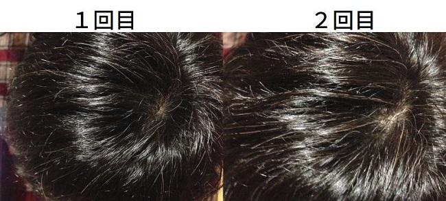 【美容師レビュー】ルプルプは染まるのか、頭頂部の染まり具合2回目